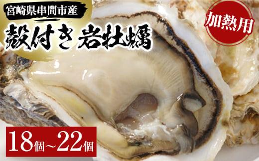 L-D2 <数量限定>串間市産!殻付岩牡蠣(加熱用・18~22個)濃厚でクリーミーな味わいを【串間市漁業協同組合】【L-D2】