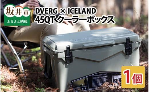キャンプ アウトドア ドベルグ×アイスランド クーラーボックス 45QT 1個 [先行予約]