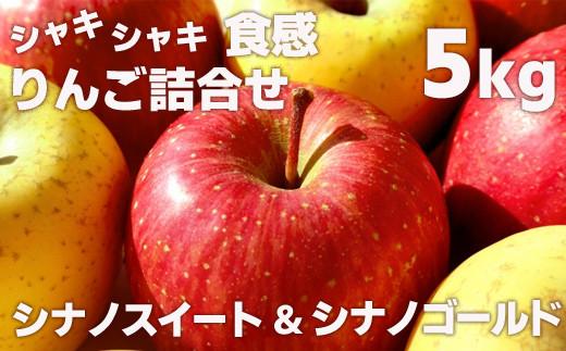 No.1135 先行予約 シャキシャキ食感・スマート、フレッシュな林檎詰合せ  りんご シナノゴールド&シナノスイート5kg(12玉~20玉)