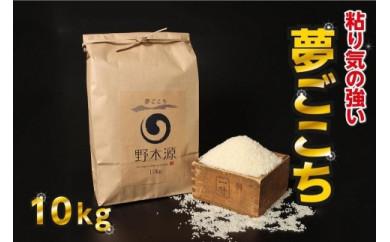 京丹後米 特別栽培米夢ごこち10kg/令和3年度産 精米 お米