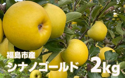 No.1124 先行予約 林檎で伝える感謝の心 りんご シナノゴールド2kg(5玉~6玉)