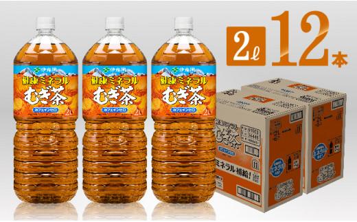 健康ミネラル むぎ茶2L×6本×2ケースPET