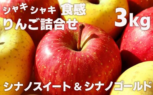 No.1134 先行予約 シャキシャキ食感・スマート、フレッシュな林檎詰合せ  りんご シナノゴールド&シナノスイート3kg(7玉~8玉)