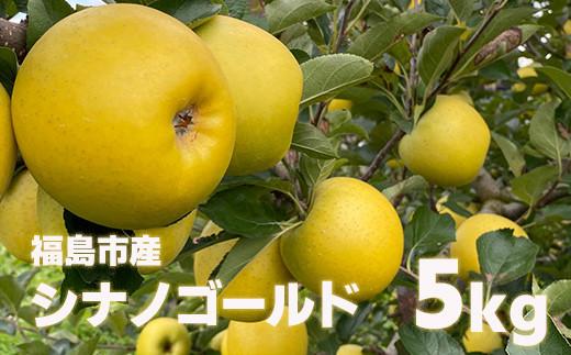 No.1126 先行予約 林檎で伝える感謝の心  りんご シナノゴールド5kg(12玉~20玉)