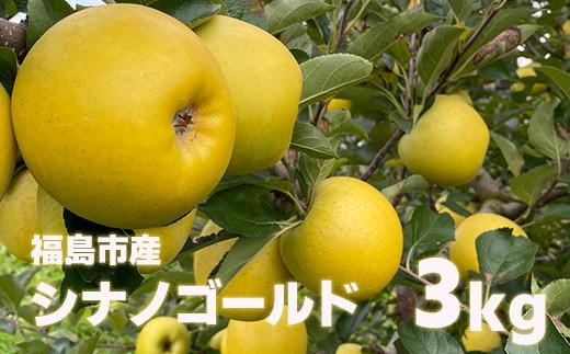 No.1125 先行予約 林檎で伝える感謝の心  りんご シナノゴールド3kg(7玉~8玉)