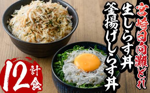【E-9】宮崎日向灘どれ生しらす丼と釜揚げしらす丼(合計12食分)【水永水産】