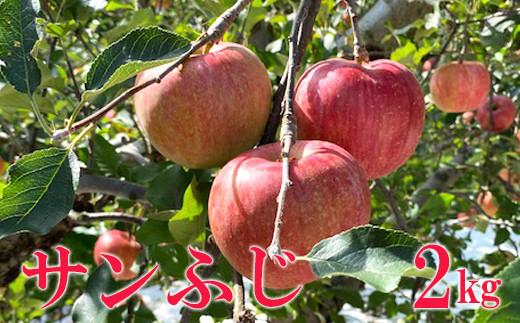 No.1121 先行予約 シャキッと爽快、太陽をたっぷり浴びた林檎 りんご サンふじ(蜜入り)  2kg(5玉~6玉)
