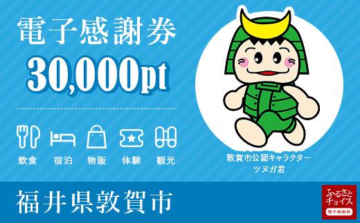 [999-c001]敦賀市 電子感謝券 30,000ポイント