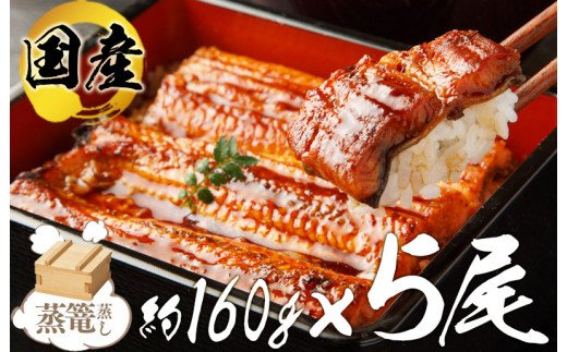 "099H225 厳選!国産うなぎ蒲焼(約160g×5尾)""秘伝のたれ""仕込み"