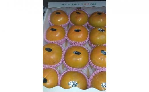 [№5656-1650]杷木の 柿 太秋柿 約3kg