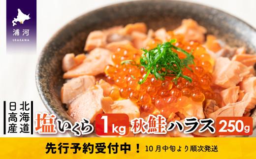 北海道日高産 塩いくら(250g×4)と秋鮭ハラス250g[15-504]