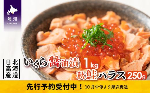 北海道日高産 いくら醤油漬(250g×4)と秋鮭ハラス250g[15-503]