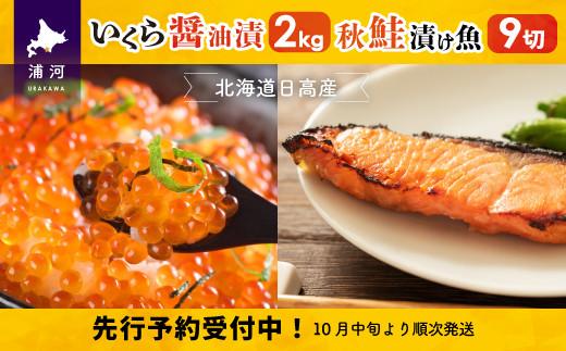 北海道日高産 いくら醤油漬(250g×8P)と漁師こだわり漬け魚(秋鮭)70g×9切 [15-231]