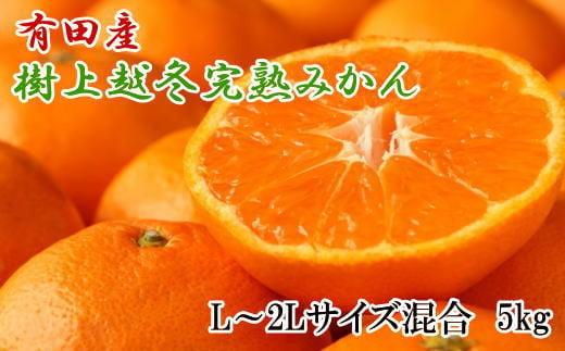 【濃厚・まろやか】有田産樹上越冬完熟みかん5kg(L~2Lサイズ混合・赤秀)