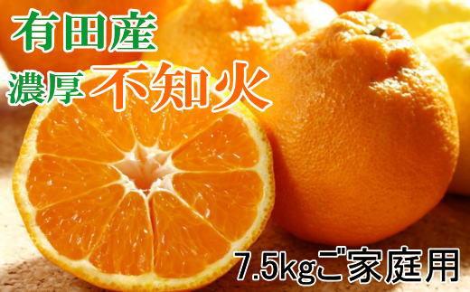 【濃厚】有田の不知火7.5kgご家庭用向け(サイズ混合)