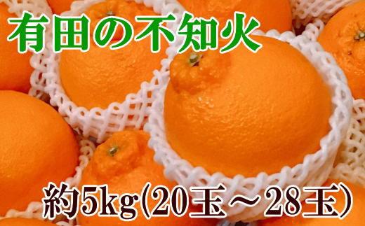 【濃厚】有田の不知火約5kg(20玉~28玉)
