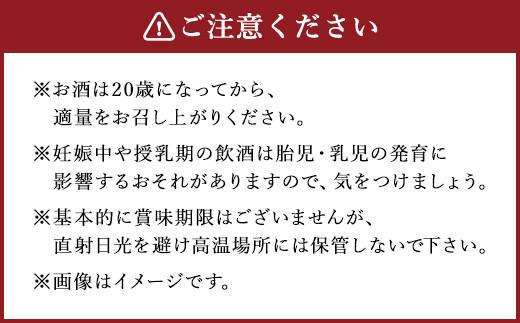 本格米焼酎 「白岳パック」 900ml × 6本セット 計5.4L
