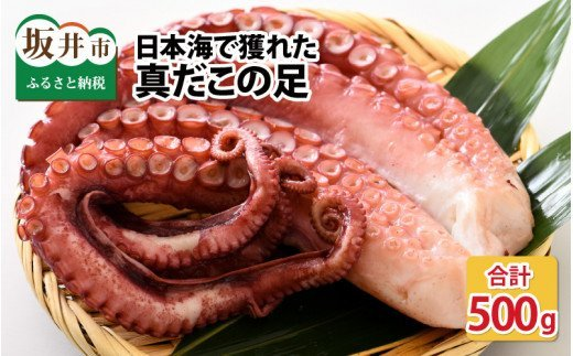【コロナ訳あり】日本海で獲れた、真だこの足  2~5本(計500g) [A-6202]