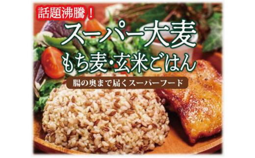FY21-065 スーパー大麦もち麦つや姫玄米ごはん 150g×12個入