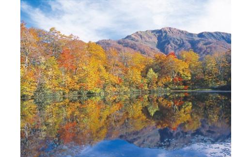 秋の刈込池