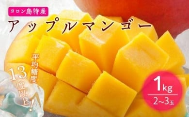 【2021年7月発送】平均糖度13度以上!アップルマンゴー1kg(2~3玉)【先行予約】
