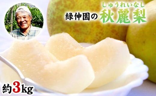 『緑伸園』の秋麗梨 期間限定 たっぷり約3kg 5-10玉前後 《8月中旬-9月下旬頃より順次出荷》 なし 秋麗 果物 スイーツ フルーツ デザート スムージーにも 熊本県玉東町産