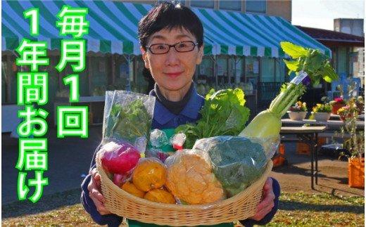 厳選・「おおばん市場」旬の野菜詰め合わせ 毎月1回1年間お届け定期便 【11246-0040】