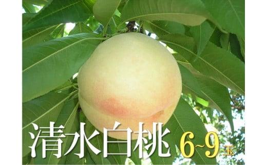FF-34   清水白桃(6~9個)