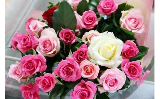 【約20本】生産者直送 有機栽培で育った朝切りバラの花束 【11246-0045】