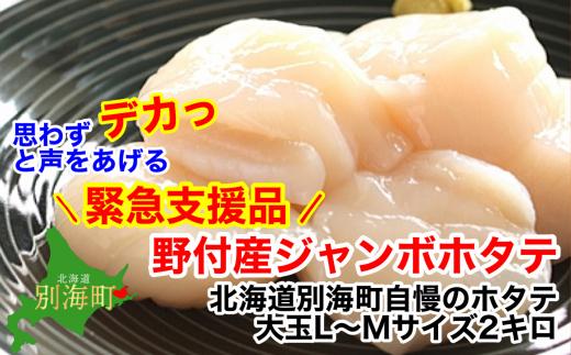 <緊急支援品>大玉L-Mサイズ 冷凍ほたて貝柱2kg 北海道野付産【1201397】