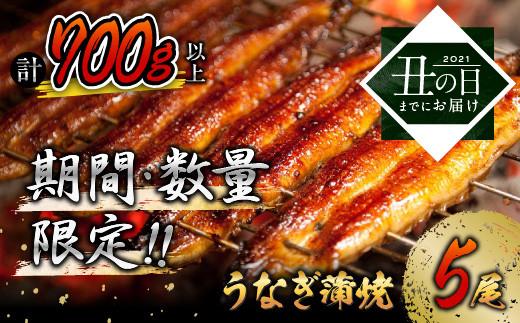《丑の日までにお届け!!》うなぎ蒲焼5尾(計700g以上)国産鰻(ウナギ・さんしょう・たれセット)