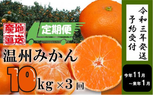 W002F.【定期便3回】11月~1月発送限定!温州みかん×10kg