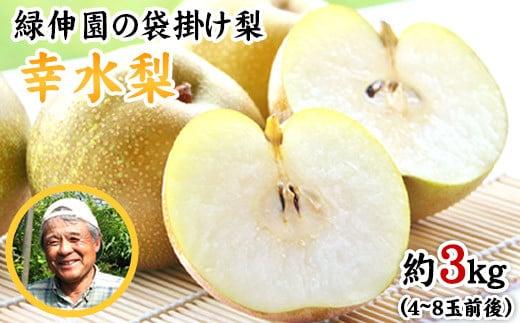 赤梨系の早生種『緑伸園』の幸水梨 期間限定 たっぷり約3kg 4-8玉前後入り《7月下旬-8月中旬頃より順次出荷》なし 幸水 果物 スイーツ フルーツ デザート スムージー