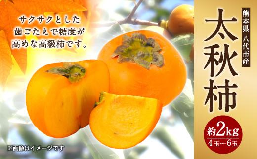 【先行予約】【2021年10月中旬以降順次発送】令和3年度 太秋柿 約2kg 4玉~6玉 柿 かき