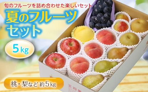 夏のフルーツセット5kg F2Y-2134