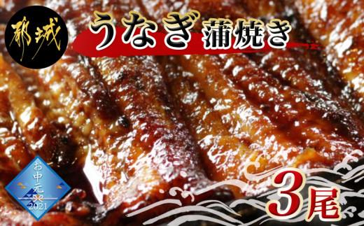 【お中元】鰻専門店・職人手焼きの本格うなぎ蒲焼き3尾_AC-3301-SG