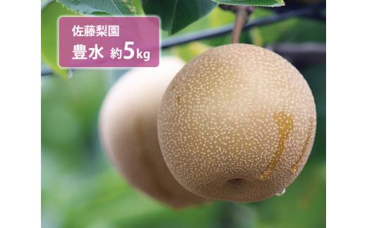 No.041 佐藤梨園 豊水 約5kg / 梨 なし 果物 千葉県 特産品