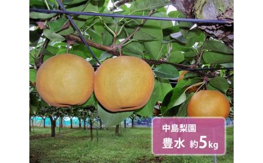 No.043 中島梨園 豊水 約5kg / 梨 なし 果物 千葉県 特産品