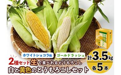 【旭川産】白と黄色のとうもろこしセット 各5本(計3.5㎏)