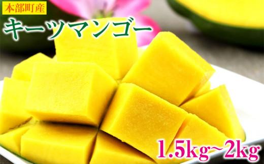 【2021】本部町産キーツマンゴー 1.5kg~2kg