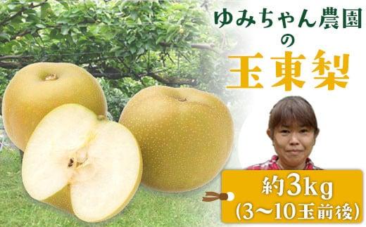 『ゆみちゃん農園』の玉東梨 約3kg 3玉-10玉前後 《8月中旬-10月上旬頃より順次出荷》熊本県玉名郡玉東町 梨 なし 果物 フルーツ 旬の梨