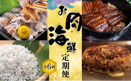 【お試し】お肉・海鮮 定期便(全6回お届け) H028-020