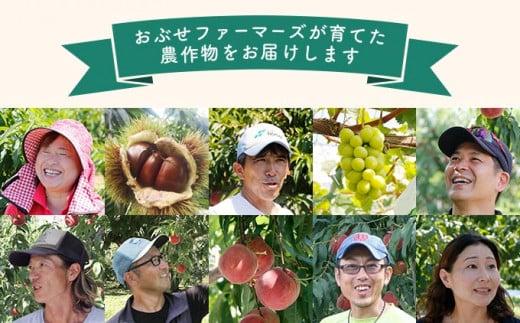 私達は地の利を生かし育てた果物を皆様にお届けしたいと立ちあがった農家集団です。愛情を持って育てた大地の恵みをぜひご賞味ください。
