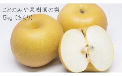 [2021年10月上旬より順次発送]ことのみや果樹園の梨 5kg[きらり]