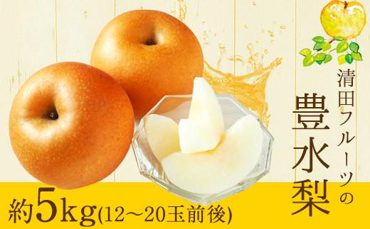 清田フルーツの豊水梨 約5kg(12-20玉前後) 《8月中旬-9月中旬頃より順次出荷》熊本県玉名郡玉東町 梨 なし 果物 フルーツ