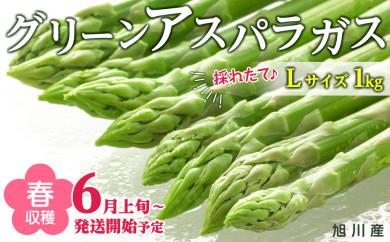 春収穫グリーンアスパラ Lサイズ 1kg( 6月上旬~発送開始予定)