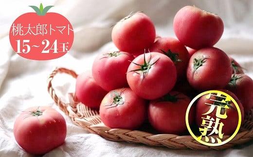 この道40年の農家から直送 完熟!桃太郎トマト15~24玉 H139-003