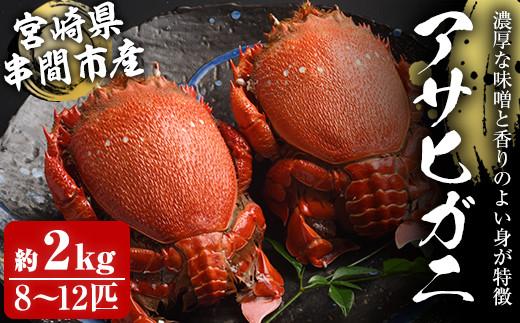 KU018 宮崎県串間産アサヒガニ(計約2kg・8~12匹)日本では大変希少な国産アサヒガニ !【豊漁丸】