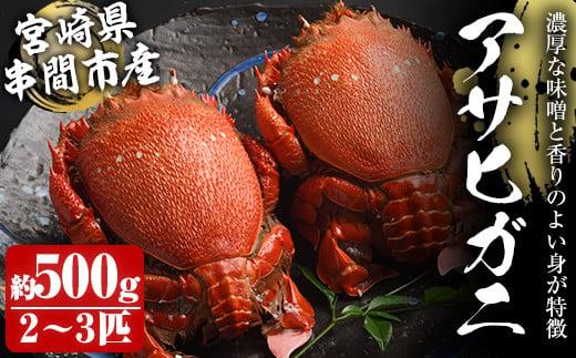 KU016 宮崎県串間産アサヒガニ(計約500g・2~3匹)日本では大変希少な国産アサヒガニ !【豊漁丸】