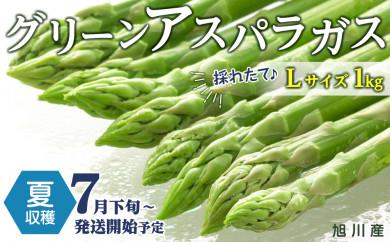 【先行予約】夏収穫グリーンアスパラ Lサイズ 1㎏(7月下旬~発送開始予定)